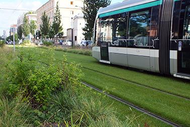 Rethinking Chicago Transit